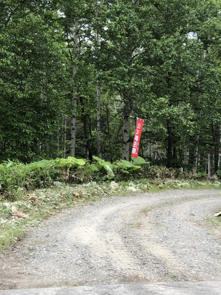 林道入り口2