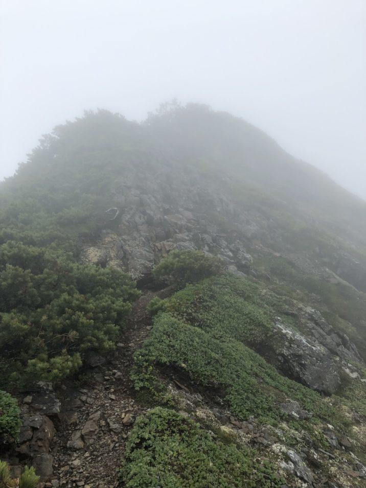 石狩岳登り