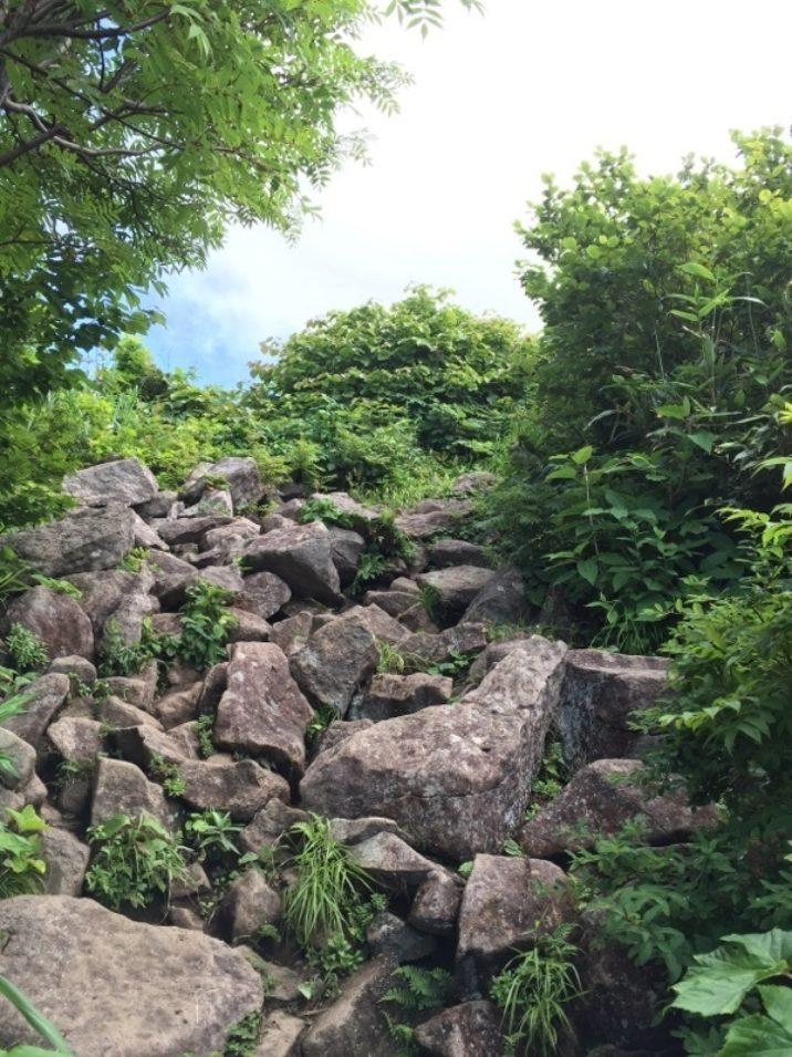 登山道岩場